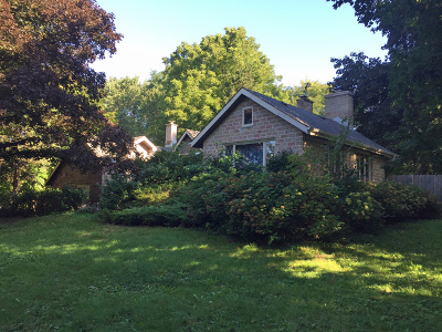 Libertyville Single Family Home For Sale: 17465 Brookhill Road