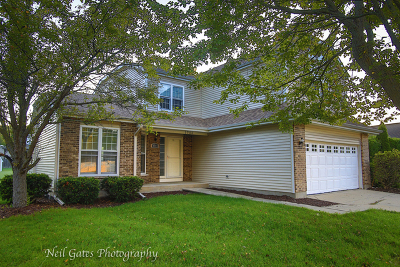 McHenry IL Single Family Home New: $249,900