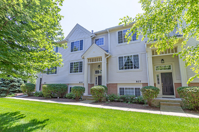 St. Charles Condo/Townhouse For Sale: 829 Pheasant Trail