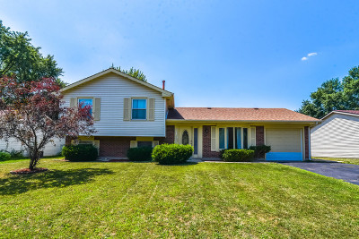 Bolingbrook Single Family Home For Sale: 213 Gettysburg Drive