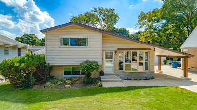 Roselle Single Family Home For Sale: 111 West Granville Avenue
