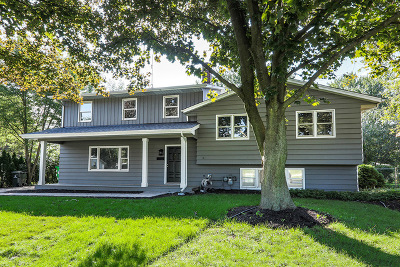Naperville Single Family Home For Sale: 308 Sycamore Drive