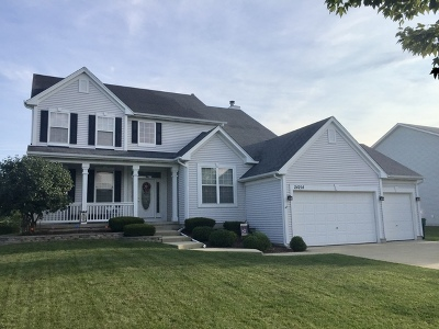 Plainfield Single Family Home For Sale: 24214 Apple Creek Lane