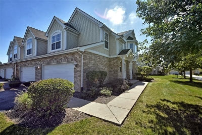 Orland Park Condo/Townhouse For Sale: 16159 Hackney Drive