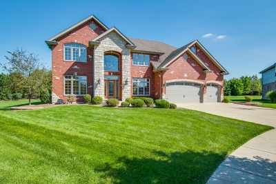 Frankfort Single Family Home For Sale: 8004 Nature Creek Court