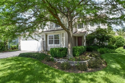 Grayslake Single Family Home For Sale: 18376 West Springwood Drive