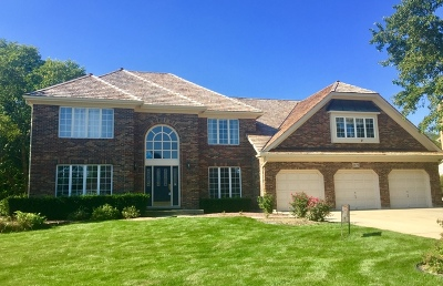 Naperville Single Family Home New: 2475 West Westbranch Court