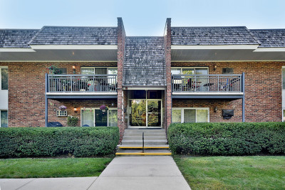 Downers Grove Condo/Townhouse New: 4043 Saratoga Avenue #D-105