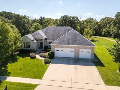 Sycamore Single Family Home For Sale: 450 Viking Drive