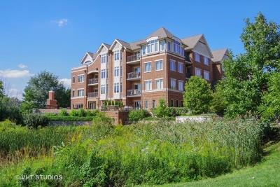 Lincolnshire Condo/Townhouse For Sale: 450 Village Green #112