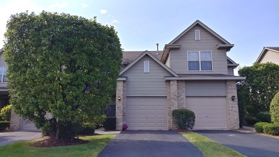 Tinley Park Condo/Townhouse For Sale: 9021 Mansfield Drive