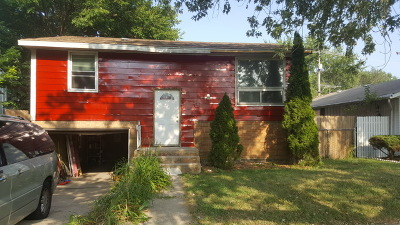 Single Family Home For Sale: 13107 South Rhodes Avenue