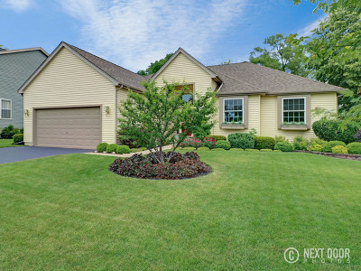 Elgin Single Family Home For Sale: 845 Columbine Drive