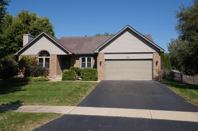Oswego Single Family Home New: 201 Wolverine Drive
