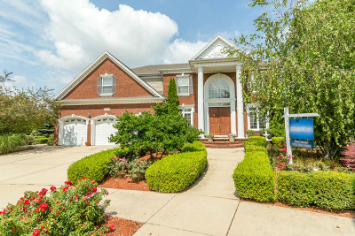 Plainfield Single Family Home For Sale: 12804 Scoter Court