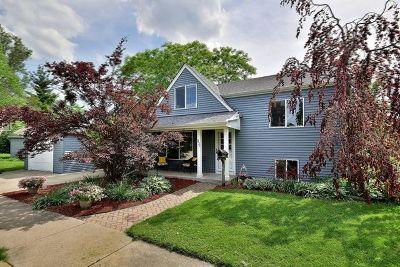 Elmhurst Single Family Home New: 331 West Hillside Avenue