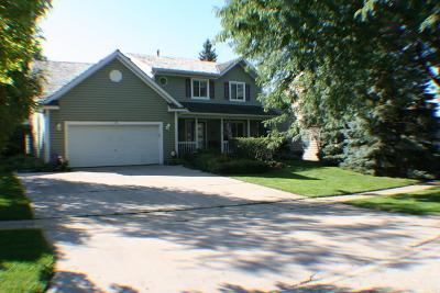 Grayslake Single Family Home For Sale: 1155 Silo Hill Drive