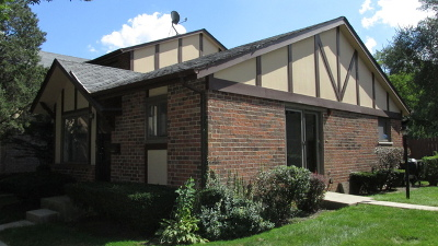 Villa Park Condo/Townhouse New: 18w233 Buckingham Lane