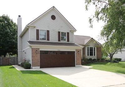 Buffalo Grove Single Family Home For Sale: 1542 Madison Drive