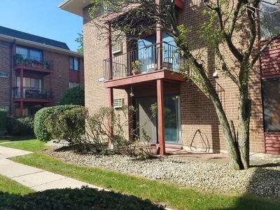 Oak Forest Condo/Townhouse Contingent: 15828 Terrace Drive #RO1