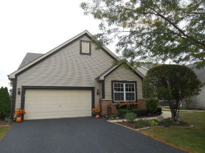 Plainfield Single Family Home New: 13747 South Tamarack Drive