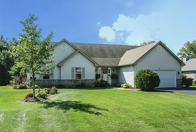 Johnsburg Single Family Home For Sale: 1107 Joseph Circle