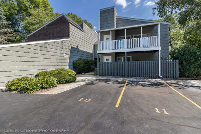 Wheaton Condo/Townhouse New: 2075 Creekside Drive #1-1