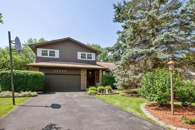 Homer Glen Single Family Home For Sale: 13715 West Dublin Drive