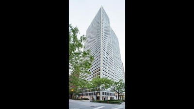 Condo/Townhouse For Sale: 1100 North Lake Shore Drive #9A
