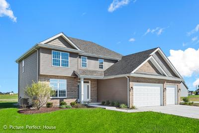 Channahon Single Family Home For Sale: 26500 Glacier Court