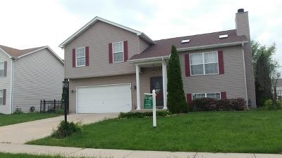 Joliet Single Family Home For Sale: 1103 Belden Way