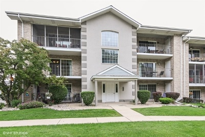 Hickory Hills  Condo/Townhouse New: 9158 West 95th Street #2A