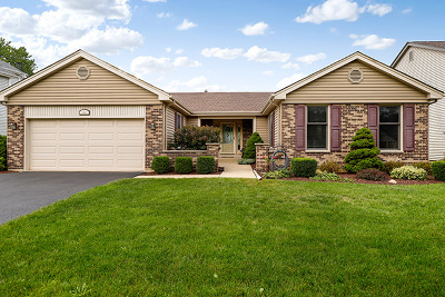 Schaumburg Single Family Home For Sale: 422 East Beech Drive