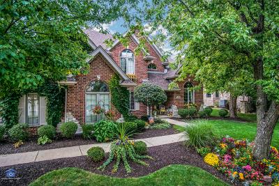 Mokena Single Family Home For Sale: 21000 Bradford Drive