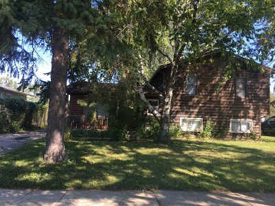 Du Page County Single Family Home For Sale: 732 Easy Street