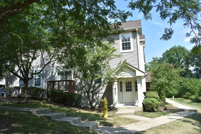 Willowbrook IL Condo/Townhouse New: $247,900