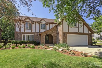 Bartlett IL Single Family Home New: $415,000