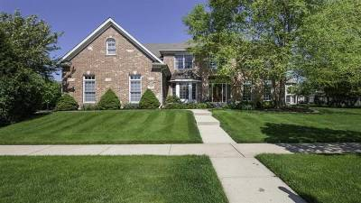 Kane County Single Family Home New: 584 West Thornwood Drive