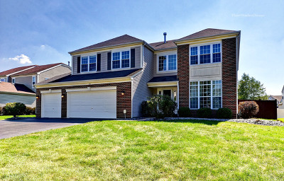 Bolingbrook Single Family Home New: 1491 Misty Lane
