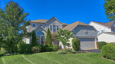 Round Lake Single Family Home For Sale: 1154 South Prairie View Lane