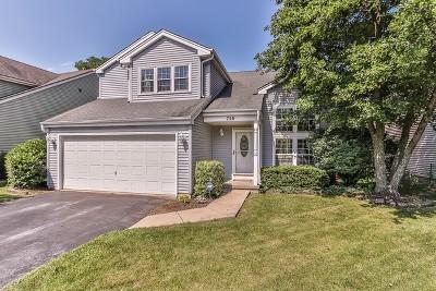 Geneva Single Family Home New: 750 Chandler Avenue