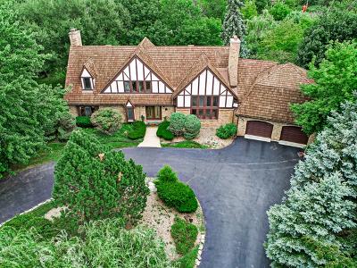 Oak Brook Single Family Home New: 803 Merry Lane