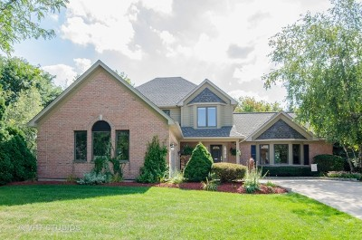 Kane County Single Family Home New: 2304 Big Woods Drive