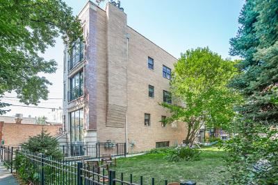 Condo/Townhouse New: 814 North Winchester Avenue #2