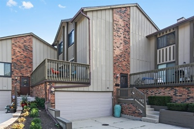 Willowbrook Condo/Townhouse For Sale: 16 Lakeview Court