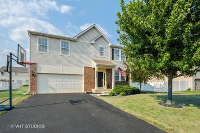 Plainfield Single Family Home New: 25234 Presidential Avenue
