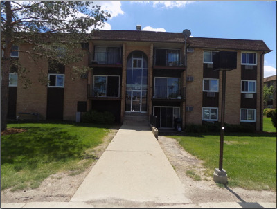 Hoffman Estates Condo/Townhouse For Sale: 745 Heritage Drive #306