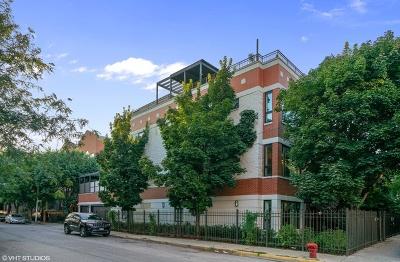 Single Family Home For Sale: 1500 North Paulina Street