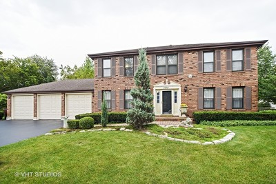 Grayslake Single Family Home For Sale: 33521 North Ivy Lane