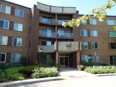 Palatine Condo/Townhouse New: 909 East Kenilworth Avenue #323